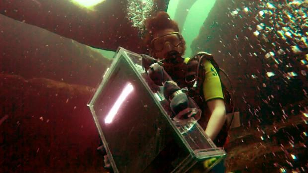 nathanielstern_underwater